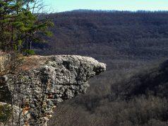 Whitaker Point